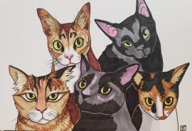 Hilarie's Cats