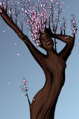 Spring Ent